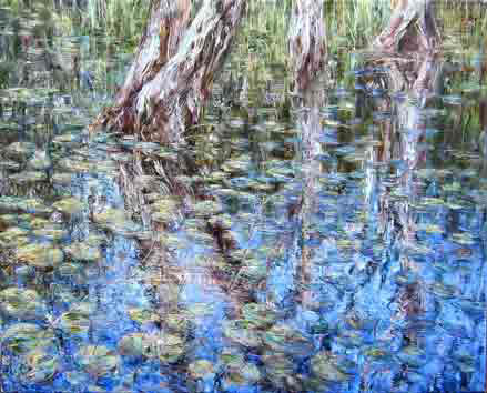 Tessa Perceval, Water lilies, Oil on Linen, 76 cm by 91 cm - SOLD